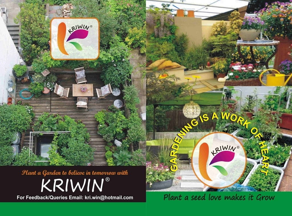 Kirwin 46 varieties of Quality Seeds