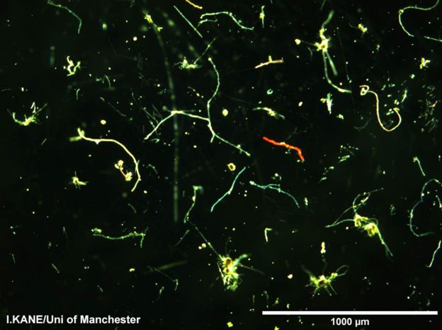 High microplastic concentration found on ocean floor