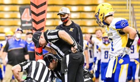 Officials often are underpaid, underappreciated and in high demand