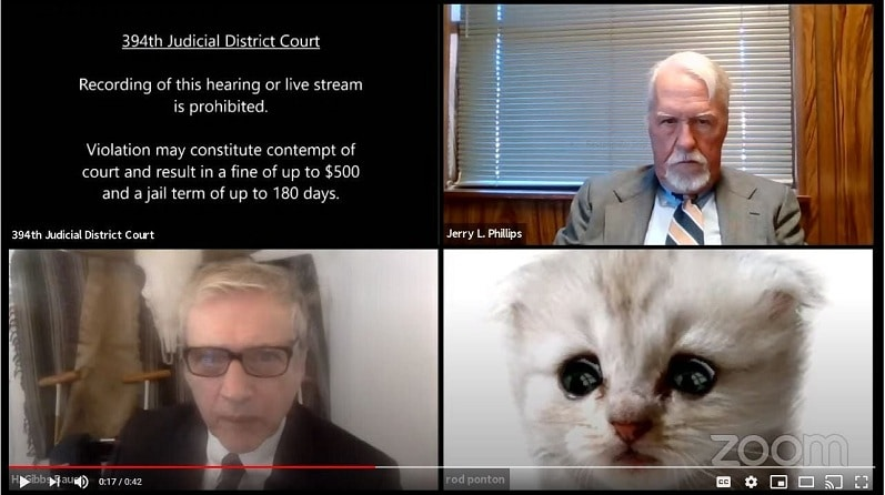 Zoom filters gone wrong: Lawyer tells judge 'I'm not a cat' during kitten filter mishap